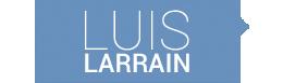 Luis Larraín - Diputado